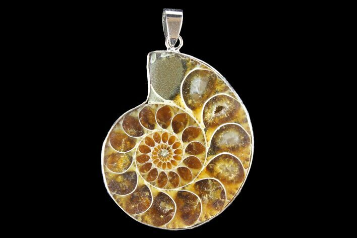 "1.6"" Fossil Ammonite Pendant - 110 Million Years Old"